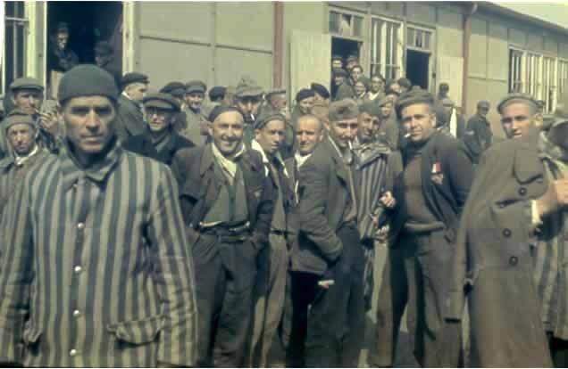 homosexuals in holocaust. the homosexuals,