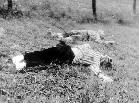 the sad case of Martin Bartesch, the infamous Mauthausen