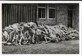 Dead bodies piled up outside the crematorium building at Dachau in April 1945