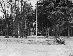 The woods outside the Dachau concentration camp