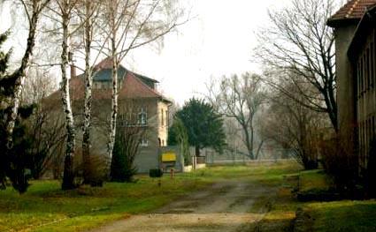 Im writing an essay for English on Auschwitz. I need a lead, HELP!?