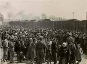 Prisoners arriving at Auschwitz-Birkenau had to undergo selection