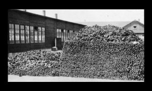 Pile of shoes found at Dachau when the camp was liberated