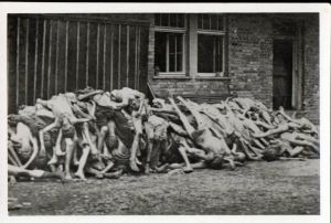 Bodies piled up outside the Dachau crematorium