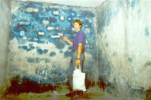 Holocaust revisionist Germar Rudolf inside a disinfection chamber at Auschwitz