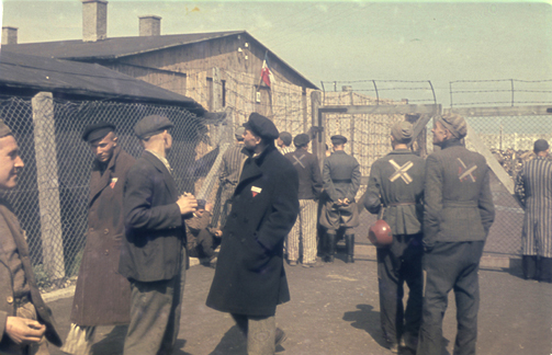 Political prisoners at Dachau after the camp was liberated