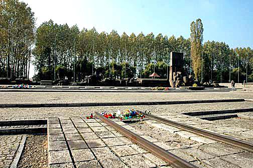 Trees behind the International Monument at Auschwitz-Birkenau