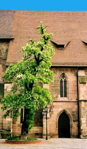 "A restored church in Nuremberg has ""eyelid"" windows"