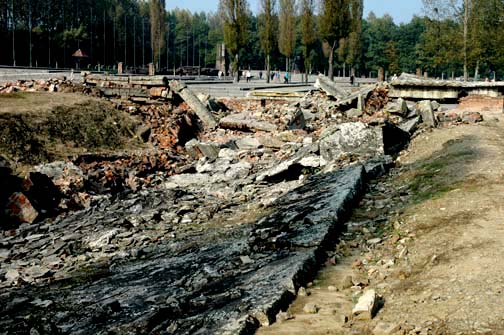 Ruins of alleged gas chamber in Krema II at Auschwitz-Birkenau