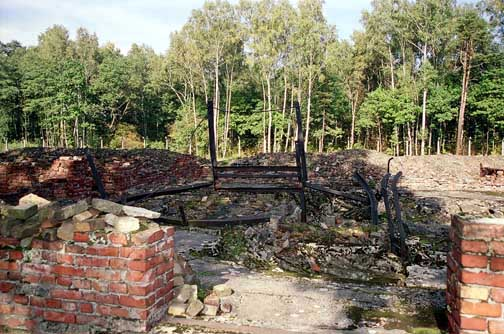 The ruins of Krema V ovens with forest in background
