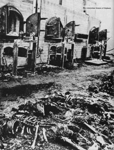 Old photo shows bodies that were burned at the Majdanek crematorium