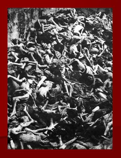 Bodies in a mass grave at Bergen-Belsen