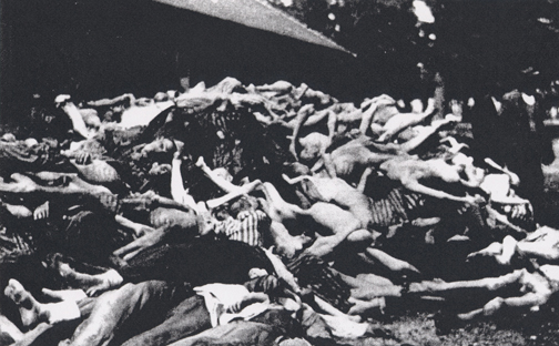 Bodies of prisoners who died after Dachau was liberated