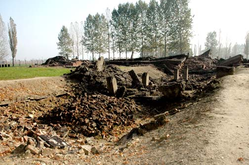 My 2005 photo of the ruins of the Krema III gas chamber