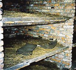 This photo was taken in the women's barracks at Auschwitz-Birkenau