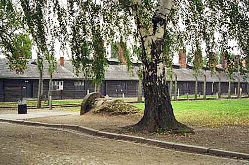 My 2005 photo of the camp kitchen does not emphasize the fence