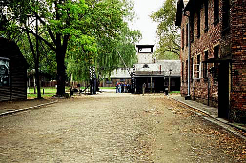 Exit from the main camp shows the camp kitchen on the left