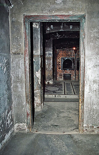When the Jews entered the Auschwitz gas chamber, they saw the ovens straight ahead of them