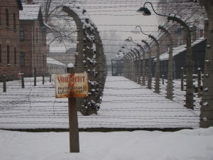 "Auschwitz photo taken by ""The Black Rabbit"""
