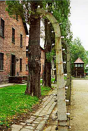 Fence post at Auschwitz