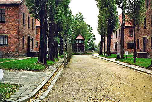 A street in the main Auschwitz camp