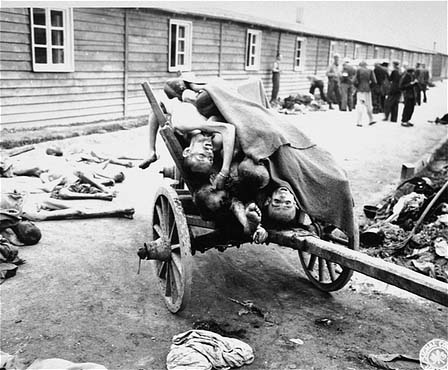 Dead bodies found in the Gusen sub-camp of Mauthausen