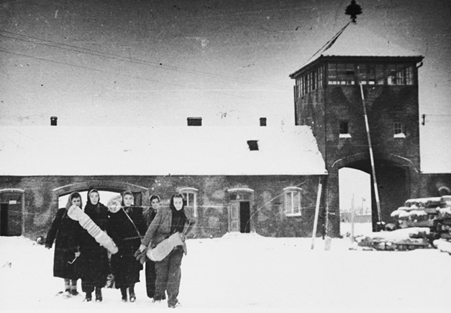 Survivors leaving the Auschwitz-Birkenau camp after being liberated