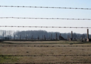 Photo shows what the Auschwitz II camp looks like today