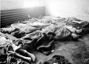 Dead bodies found in Block 11 at the Auschwitz main camp