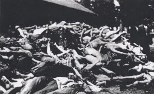 Dead bodies of prisoners who died of typhus at Dachau after the camp was liberated