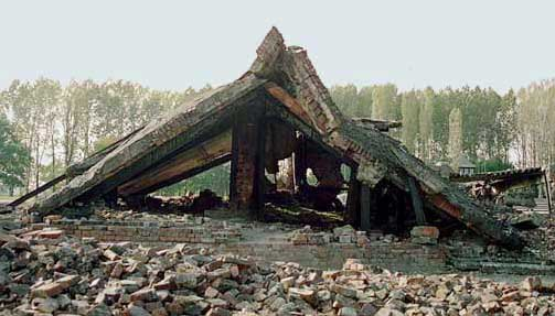 My photo of the ruins of Krema II