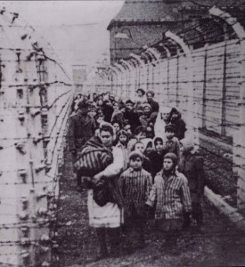 Eva Moses Kor and her twin sister Miriam lead the prisoners as they are marched out of Auschwitz-Birkenau