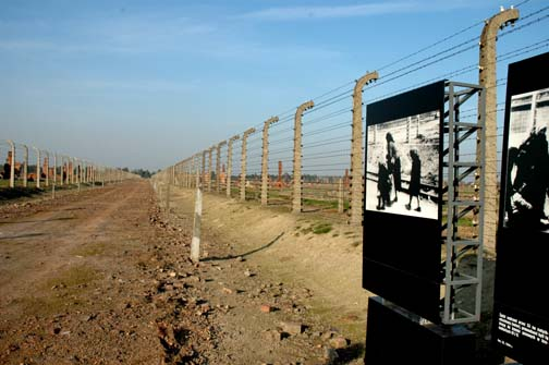 """research paper on survival in auschwitz Other options see more research papers, essays and term papers on holocaust in general search for more files, research papers, essays and term papers on: """"life is beautiful"""" and """"survival in auschwitz""""."""