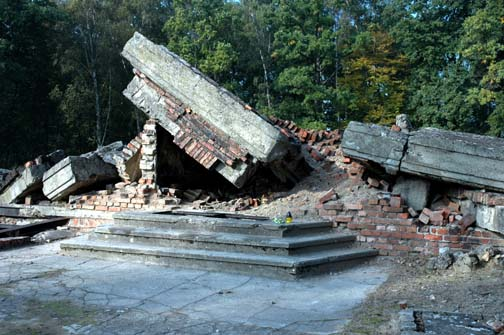 My early morning photo of the ruins of Gas Chamber III at Auschwitz-Birkeanu