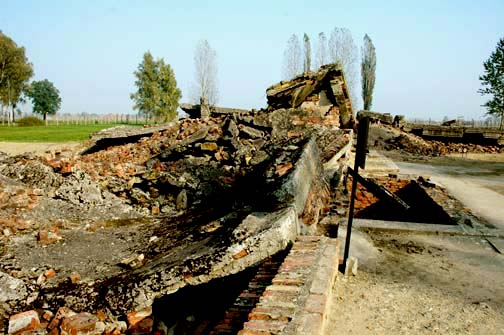 My photo of the ruins of Gas Chamber III at Auschwitz-Birkenau