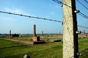 My 2005 photo of the ruins of Birkeanau