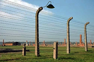 Fence around the Birkenau camp is original