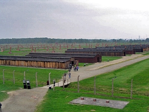 I took this view from the Birkenau tower in 1998