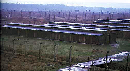 My 1998 photo of Auschwitz-Birkenau taken from the top of the gate tower