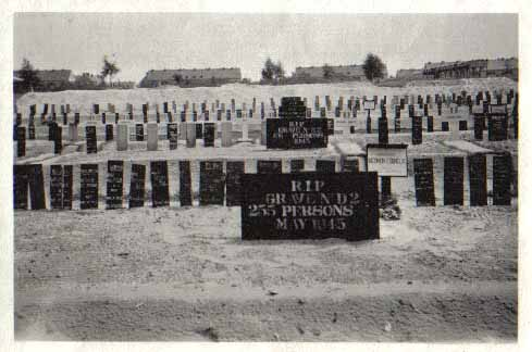 A few of the bodies at Bergen-Belsen were buried in individual graves