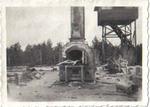 There was only one oven to burn the dead bodies at Bergen-Belsen