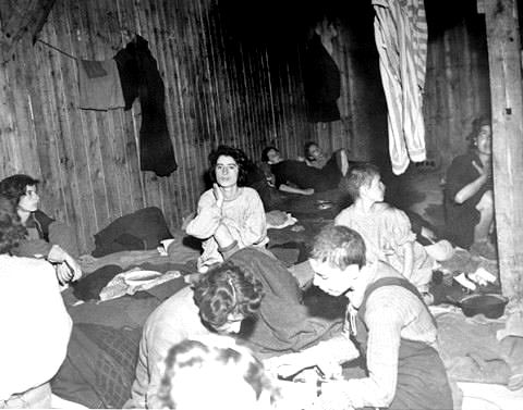 Prisoners in the typhus barracks at Bergen-Belsen