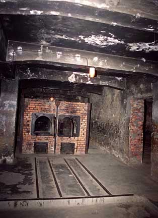 A photo of the ovens in the main Auschwitz camp was shown in the docutmentary