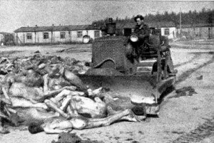 British soldier driving a bull dozer to shove the bodies of prisoners into a grave