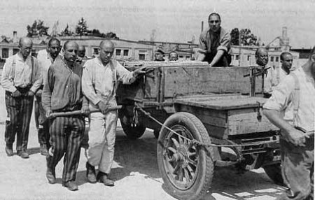 Gypsies were forced to work in the Dachau camp