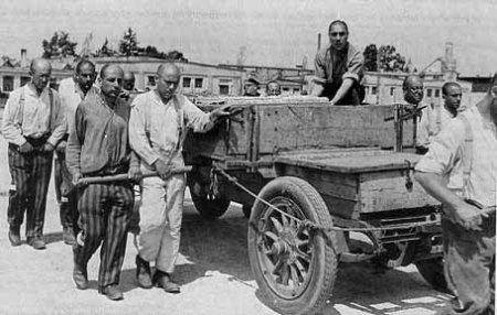 Gypsies were forced to work in the Dachau camp