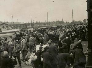 Jews arriving on a train at Auschwitz-Birkenau