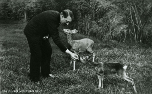 Hitler feeding tame deer at his mountain retreat