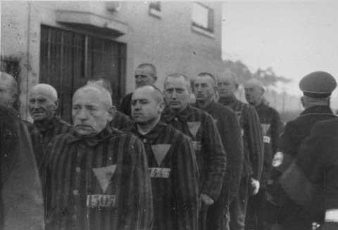 1938 photo shows that virtually no Jews were sent to Sachsenhausen