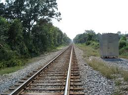 Railroad tracks usually don't have grass growing between the rails